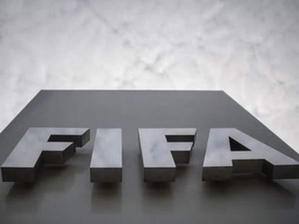 РФС поможет ФИФА в расследовании инцидента на матче Россия - Франция