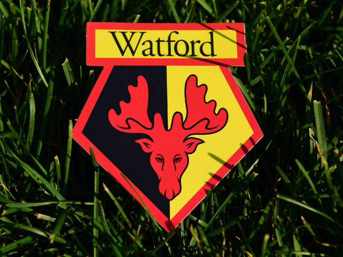 «Уотфорд» расторг контракт с Янматом
