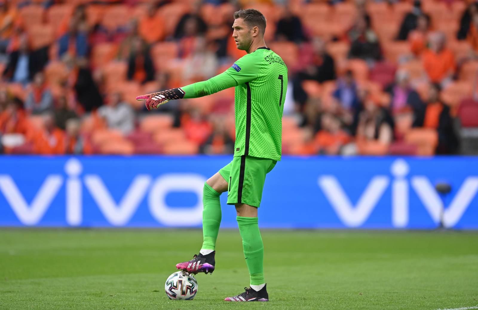 Стекеленбург завершил карьеру в сборной Голландии