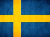Шведы могут сыграть в Москве без основного защитника