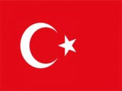Стало известно имя нового тренера сборной Турции