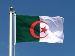 Бельмади возглавил сборную Алжира