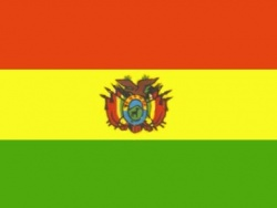 Федерация футбола Боливии отозвала мандат президента организации из-за коррупции