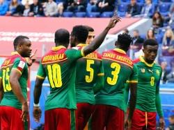 Эрикссон ведёт переговоры со сборной Камеруна