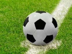 Котовирус поражает футбол: совместим ли спорт номер один и коты