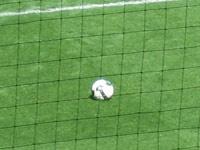 Трус не играет в футбол: сборная Беларуси сразится с канадцами