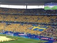 """Телин: """"Для Швеции сегодня был, я так думаю, матч жизни и смерти"""""""