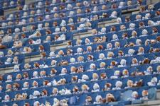 Матч чемпионата Нидерландов посетили 15 тысяч мишек