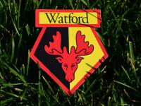 «Уотфорд» - «Норвич»: прогноз на матч чемпионата Англии – 7 июля 2020