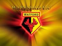 Как «Уотфорд» выкарабкался из зоны вылета – видео